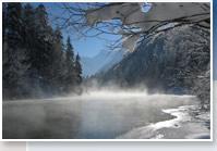 alpine view winter