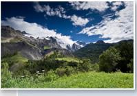alpine view summer
