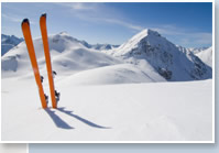 Alpine view skis